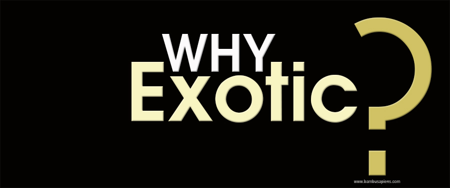 WHY EXOTIC?