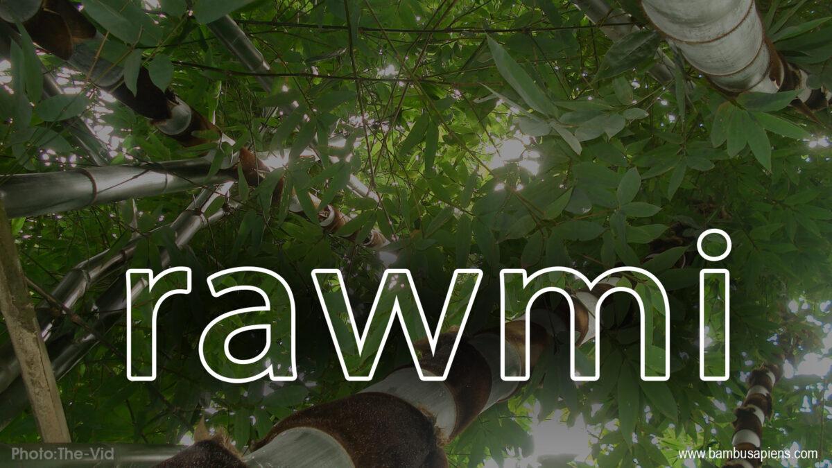 Rawmi